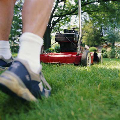 Person Cutting Grass With Push Lawn Mower